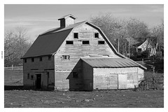 Close Your Barndoor (PDX Flyer) Tags: black white barn grass building farm country washington state southwest house tree