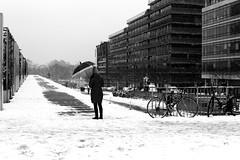 At the end of the snowy path (pascalcolin1) Tags: paris13 bnf femme woman parapluie umbrella neige snow allée path enneigé snowy photoderue streetview urbanarte noiretblanc blackandwhite photopascalcolin canon 50mm canon50mm