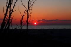 Coucher du soleil (LaDani74) Tags: mare sea beach seascape sundown coucherdesoleil versilia tuscany italy marinaditorredellago canoneso760d sigma1750 sunset