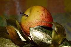 The reality is it's a fake (Harry McGregor) Tags: stilllife imitation macro bokeh dof deothoffield goldenleaves joshuaaaronguillory poem poetry harrymcgregor nikon d3300 18 february 2018 sixwordstory imitationapple