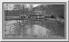 Eichener Mühle (friedrichfrank1966) Tags: rahmen mill mühle bw blackandwhite water pond teich wasser houses denkmalschutz januar monochrome