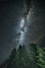 Milky Way at Spruce Knob [08.21.17] (Andrew H Wagner   AHWagner Photo) Tags: 5dmk3 5d3 5dmkiii 5dmarkiii 5dmark3 rokinon 14mm f28 rokinon14mm outdoors explore exploration exploring hiking mountain valley nature landscape forest woods trees summer wv westvirginia monongahelanationalforest monongahela nationalforest longexposure astrophotography astronomy nightscape nightlife nighttime stars night sky highiso lightpainting milkyway