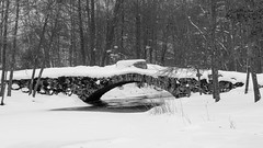 Stone Bridge (Cajofavi) Tags: snow river stream forest bridge kalmar sweden bw