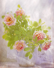 Enjoy the roses. WW (BirgittaSjostedt- away for a while.) Tags: roses flower stillife light hightkey soft lace window romantic beauty texture birgittasjostedt