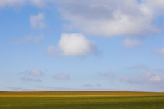 Width (CoolMcFlash) Tags: landscape minimalistic minimalism minimalistisch simplicity cloud field austria loweraustria rural sky copyspace canon eos 60d landschaft wolke feld österreich niederösterreich ländlich himmel fotografie photography horizont horizon nature natur tamron b008 18270 green grün spring frühling