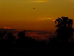 Osprey Helicopter (Scott Douglas Worldwide) Tags: sky s sunrays smiling sun sunset perfect peaceful p paradise palmtree palm palms palmtress pretty pink pp mystical m mountains misty magic military orange odd orangesun orangeglow old oldsoul oblivion yuma yumaaz y yy az arizona awesome america amature american