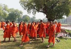 Moines Bouddhistes Monk **Unesco site* Sarnath..India (geolis06) Tags: geolis06 asia asie inde india uttarpradesh sarnath meditation religieux religious pèlerin pelerinage pilgrim pilgrimage bouddha buddha bouddhisme banaras olympus pélerin monk moine patrimoinemondial unesco unescoworldheritage unescosite stupadhamekh