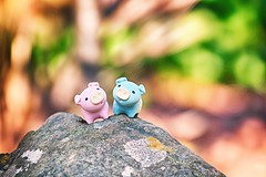 34/365 : Climbing a Tiny Mountain (♥GreenTea♥) Tags: pig eraser pigeraser pigs erasers pigerasers bluepig pinkpig blue pink macro rock stone iwako iwakoeraser iwakoerasers イワコー t1i canon canont1i canont1irebel canonrebel eos canoneosrebelt1i ef100mmf28macrousm canonef100mmf28macro hdr googlenikcollection nikcollection colorefexpro viveza hdrefexpro 365 photoaday pictureaday project365 365toyproject oneobject oneobject365daysproject 365the2018edition 3652018 day34365 365day34 day34 project36533 03feb18 project36502032018 02032018 climbing climb bokeh