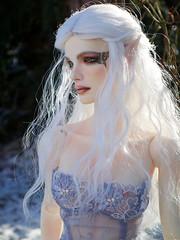 The Elf (Silli'on) Tags: doll portrait fantasy elf bjd angelsdoll lucia fantasiadoll fantasia