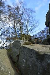 Brimham Rocks (127) (rs1979) Tags: brimhamrocks summerbridge nidderdale northyorkshire yorkshire loversleap