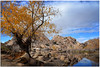 The Hidden Valley (fotografdude) Tags: joshuatree nationalpark lake formation reflections fotografdude nikond610