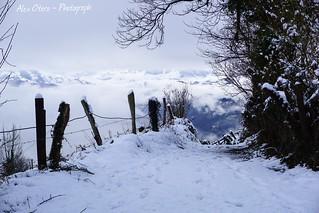 Monte de La Teyerona (Principado de Asturias).