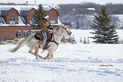 In Full Flight (Canon Queen Rocks (1,980,000 + views)) Tags: horse racing galloping tree rider girl whitehorse snow winter sports saddle skijoring outdoors