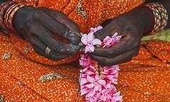 தொலைந்து போன கனவுகள் .......! (Lakshmi. R.K.) Tags: nikon d 5200 lux photography