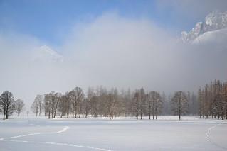 Winter morning scene