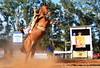 Andrinho e Emília da Lata (Eduardo Amorim) Tags: gaúcho gaúchos gaucho gauchos cavalos caballos horses chevaux cavalli pferde caballo horse cheval cavallo pferd pampa campanha fronteira quaraí riograndedosul brésil brasil sudamérica südamerika suramérica américadosul southamerica amériquedusud americameridionale américadelsur americadelsud cavalo 馬 حصان 马 лошадь ঘোড়া 말 סוס ม้า häst hest hevonen άλογο brazil eduardoamorim gineteada jineteada