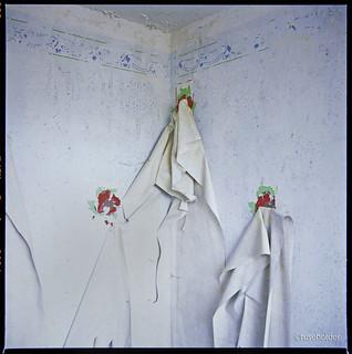 Installation, N°221 (Stigmata einer Mauer)