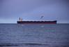 tanker (axiepics) Tags: lagoon esquimalt colwood esquimaltlagoon ocean shore shoreline nature water sky sea tanker birds seagulls boat