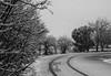 240A3962 (JoseFuko8) Tags: nieve fuentesauco zamora paisajes nevada invierno canon 7d mark ii pueblo campo