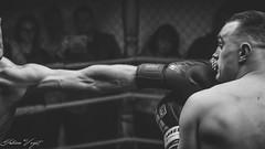 Punch. (Fabien Veyet) Tags: mma boxing fightmmaufccombatfrancesambofreefightwrestlerwrestlingluttelutteurcombattantwarriorcagekickpunchpunisherbourgoinjallieuisèrebwwbnbbwnbnoirblanccrémieulyongrenoble ufc punch tyson kick france lyon fight combat art martiaux martial knockout bw black white