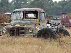 abandoned Austin Loadstar 1952 truck in Longwarry, VIC, Australia (75kombi) Tags: longwarry