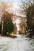(Devin Walker) Tags: tamron nikon d200 snow path 02b