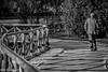 Tra luci ed ombre... il cammino di una vita (Gian Floridia) Tags: bw bn bienne cammino fenceparco life lights luci ombre parcosempione park path shadows steccato tortuoso vita winding