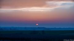 Bonne nuit. (musette thierry) Tags: vert bleu horizon soleil couchédesoleil hiver winter musette thierry nuit night belgique belgium