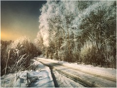 Winter road. (odinvadim) Tags: textured winter iphoneart iphoneography iphoneonly forest ourtravelgram snapseed evening painterlymobileart specialist sunset textures travel frost artist editmaster landscape
