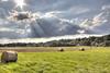 Hay bales in summer 2017 (HDRforEver) Tags: hdr canon 600d sky clouds sunset photomatix new interesting august 2017 karsten höltkemeier hay bale heuballen germany nrw owl ostwestfalen nordrheinwestfalen summer sommer green blue
