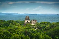 Jungle of Stone (DSC6240) (DJOBurton) Tags: guatemala peten tikal temples maya
