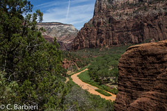 Zion National Park - the 40 Trip (82 of 143) July 26, 2017.jpg (C. Barbieri, CPCU) Tags: nationalparks the40trip utah zion