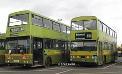 Dublin Bus KD353 & D839. (Fred Dean Jnr) Tags: dublinportrally2014 dublinportrally dublinbus kd353 gsi353 d839 df839 839nik ik si dublinport dublin dublinbustwotonegreenlivery nationaltransportmuseumofireland september2014