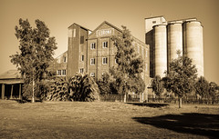 Corowa Flour Mill (laurie.g.w) Tags: former corowa flour mill nsw border town oldbuilding themurray