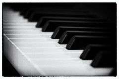 050/365: The black and the white (Zoo Human) Tags: 365the2018edition 3652018 day50365 19feb18 dailyphoto piano music monochrome