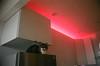 Cat in Kitchen (josephkrings) Tags: 35mm brooklyn cooter fuji fujisuperia1600 nyc nikkor28105mm13545d nikonn70 cabinets home redlight refrigerator