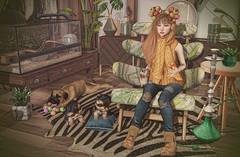Lazy Day (Gabriella Marshdevil ~ Trying to catch up!) Tags: sl secondlife cute kawaii doll uber fameshed jian monso mudskin bento catwa blackbantam