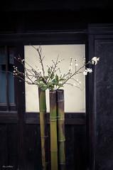 Kurashiki (David Hédin) Tags: 2012 kurashiki chugoku japon jp
