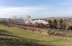 Grayrigg wide view (EltonRoad) Tags: 45699 galatea jubilee class steam train locomotive railway line winter cumbrianmountainexpress grayrigg lambrigg docker cumbria lakedistrict railwaytouringcompany westcoast