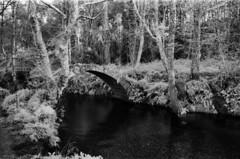 Ponte medieval (trabancos) Tags: canon eos 1n ef 28mm 28 rollei infrared 400 720nm filter xuño porto do son barbanza galicia 35mm film ir