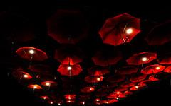red umbrellas (poludziber1) Tags: street streetphotography skyline srbija serbia city colorful cityscape color colorfull capital urban umbrella red belgrado beograd belgrade travel