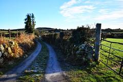 DSC_7316 (seustace2003) Tags: baile átha cliath ireland irlanda ierland irlande dublino dublin éire glencullen gleann cuilinn