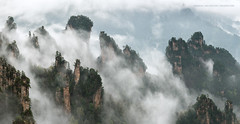 The Dragon's Breath (Marsel van Oosten) Tags: marselvanoosten squiver phototour tours asia china wulingyuan zhangjiajie mountains clouds mist fog workshop landscape majestic amazing forest trees iconic shapes geology