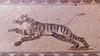 Tiger mosaic (Stephen T Slater) Tags: 2017 cyprus houseofdionysos katopafos floor mosaic tiger paphos cy