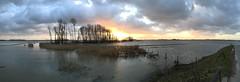 Extreme tide in Biesbosch NP (Adriaan van Oost) Tags: trees sunset clouds nationalpark np biesbosch