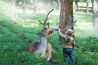 #curiosity #animal encounter