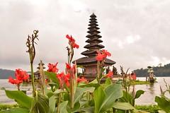 Pura Ulun Danu Bratan [2] (issathelakwatsera) Tags: d5200 nikon travel indonesia bali bedugul religion hindu plants temple lake flowers garden clouds sky architecture
