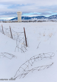Buried Barbed Wire #HFF