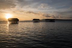 Lovely bungalows (pleymalex) Tags: raja ampat bungalow homestay kri papua new guinea asia koh lanta