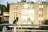 (Cindy en Israel) Tags: ave ciudad cuervo animal plumaje pico fauna faunaurbana baranda nahariya israel